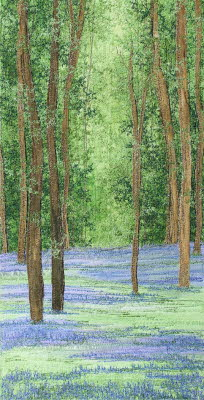 Bluebells Time